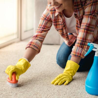rug homemade cleaner