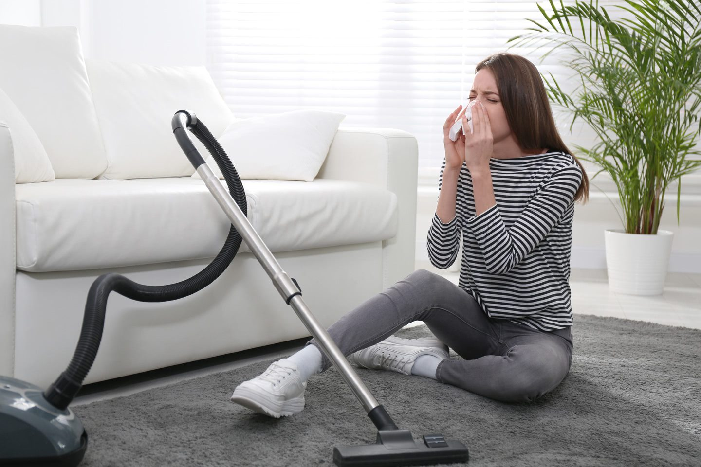 Mold and dust mites can live within your carpets. By cleaning them regularly you can reduce allergy attacks.