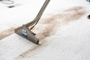 Getting stains out of a carpet can be difficult. Hiring a professional can help make it easier